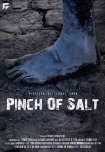 mindie-winners-august2016-poster-Pinch Of Salt